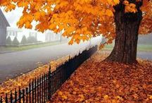 Doamna Toamnă / Lady Autumn / Autumn is MY season because that's when I was born. And October is MY month.  Dibs!