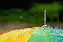 Rain / i just love rain