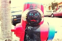 The Art of the Fire Hydrant / by Cultural Pittsfield