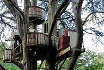 Tree House Livin'  / Why cut down #trees when you could live IN the trees?! Really though...who of us hasn't dreamed of living in one of these whimsical perches high in the canopy? At least we can dream (or pin) about it. #treehouse