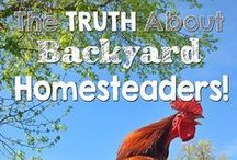 Homesteading & Country Living / by Tina Butler {Mommy's Kitchen}