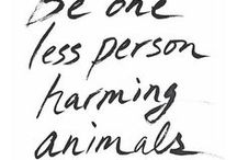 Cruelty Free Info and Resources