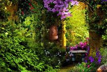 Gardens and flowers / by Lynda Shoup