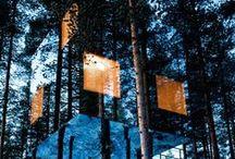 Architecture Awesomeness / by Dannette Jimenez