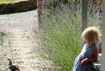 Sweet Garden / Espacios verdes, frescos, calmos, que invitan a descansar