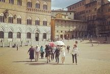 SIENA  / Early Renaissance art, contemporary culture and a bareback horse race (the Palio).