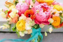 Weddings / by Kelly Engels