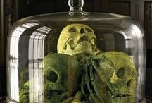 Halloween~Bell Jars & Cloches