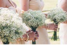 McHoodie's Get Married