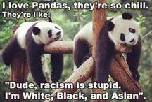 Happy Panda / by Colleen Star Koch