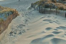 Beaches and Beachy / All things beach! / by Patti C
