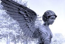 Angels / by Patti C