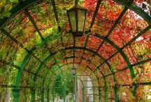 Gardens & parks / by Vicens Tort Arnau