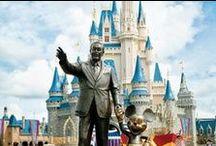 Disney World 2013