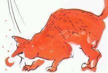 Gatão laranjinha
