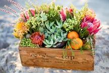 Wedding // Flowers / Wedding bouquets, centerpieces, and general floral loveliness.