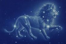 Leo / I truly don't really give much credence to zodiac stuff... However, I DO think they are interesting..... and, some of these are SO dead on, I couldn't ignore them. Absolutely crazy!!!  / by Melissa Roberts