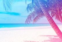 Paradise / by cambio