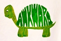 Awkward TURTLE / by Valerie Nicklay