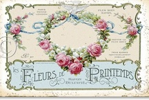 WeBsiTeS FrEe PriNtAbLes & BLoGs / Websites and blogs I like plus all kinds of free printables. / by Carol Hembree Bell