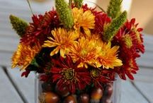 AUTUMN / Things to do with the Fall Time of Year / by Margaret Richardson
