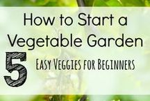 the veggie side / by Torina Scott-Steelsmith