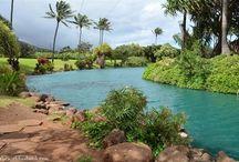 Vacation Maui