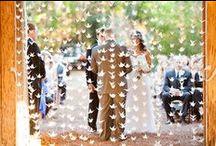 Wedding Inspiration  - Decoration