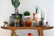 house / interior design, home furnishing, rugs, mugs, plates, home goods. / by Megan Far