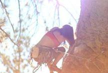 climb on. / rock climbing #mountaineering #colorado