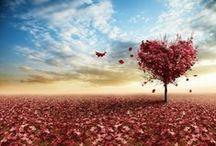 valentines day. / #love #romance #pink #valentine #dessert
