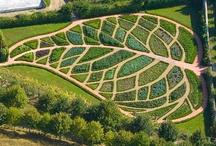 Garden- Planters, bed ideas