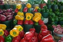 Vegetables - Everything Peppers / Growing and Tending Peppers / by Mike Marsee