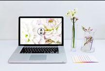 graphic design //