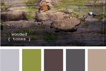Color Ideas / by Miranda W