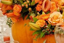 Halloween / by Miranda Rocchi Ayapana