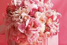 pink / by Karen Sucher