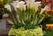 Floral and Other Arrangements