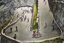 Roadies World / Feed your road cycling passion!