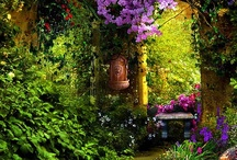 Flowers and Gardens / This board is full. Now pinning on Flowers and Gardens 2. / by Anne-Marie Bezzina