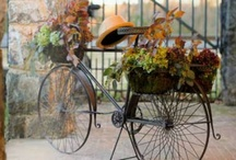 Bicycles / by Pati's Pin House