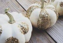 Season: Fall / by Samantha Blanchard