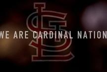 Cardinal Nation / by Vanessa Hernandez