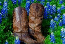 Bluebonnets and Boots / by Pati's Pin House