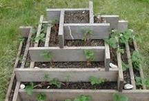 Grow Garden Grow