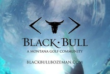 Black Bull / by Kelly Baucom