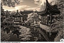 Lan Su Classical Chinese Gardens Wedding, Portland, Oregon