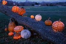 F A L L  •  H O L I D A Y S / Halloween, Thanksgiving, and all things Autumn