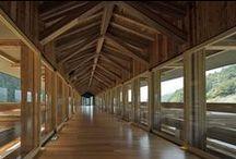 h 4_5 legno - wood / cosa possiamo fare con il legno? In casa                          - what we can do with wood? In home