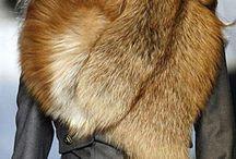 Fabulous Fur / by Amanda Butler